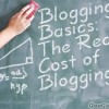 Thumbnail image for Blogging Basics: The Real Cost of Blogging or Don't Pay me in Toilet Paper