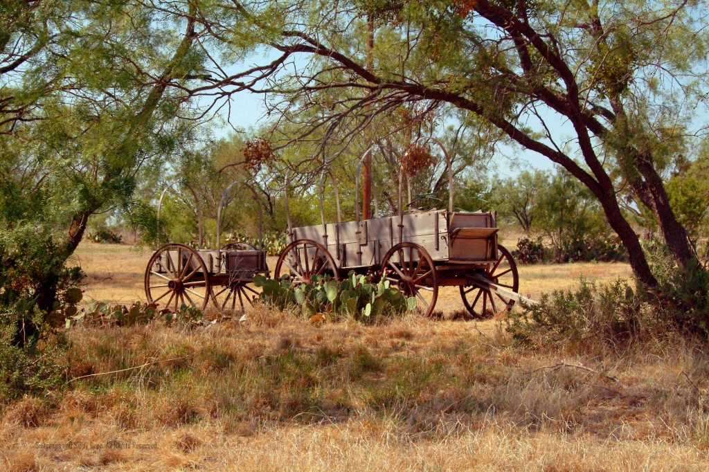 Covered wagon headed west