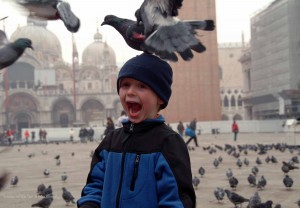 The Pigeons of Venice