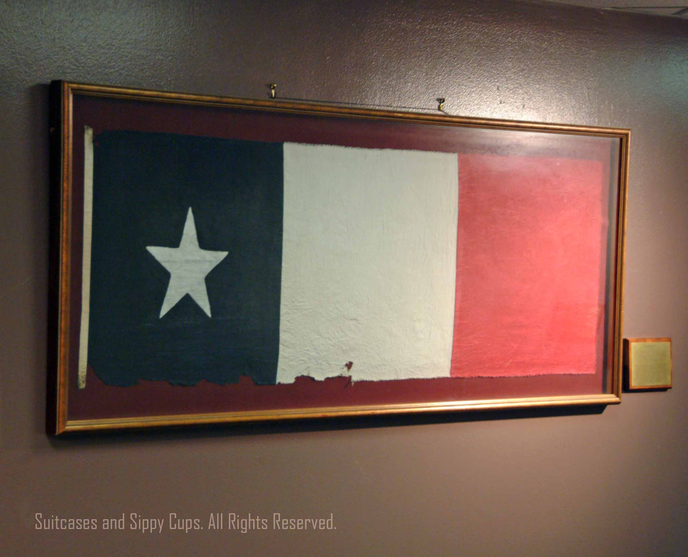 Dscf Which Flags Flew Over Texas