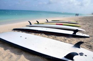 Downward Dog in Paradise:Tips for a First Paddleboard Yoga Class: Travel Tips Tuesday
