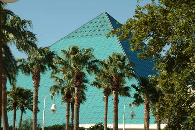 Moody Gardens~Great Family Weekend or Pre-Cruise Stay - Suitcases ...
