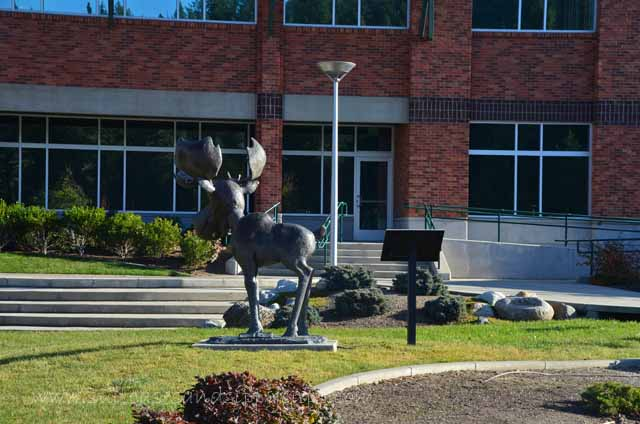Mudgy Moose statue public library