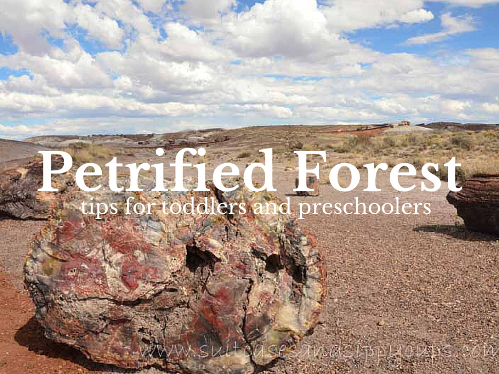 On the Way to Grand Canyon: Tips For Visiting Petrified Forest with Kids
