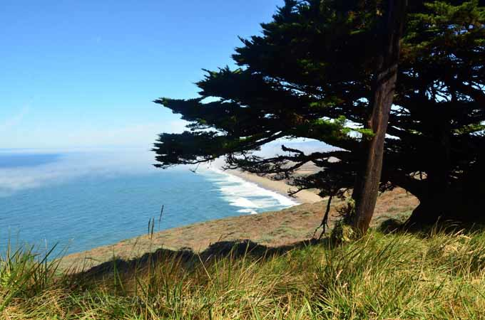 views from Point Reyes