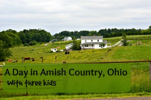 One Day Itinerary for Ohio Amish Country with Kids