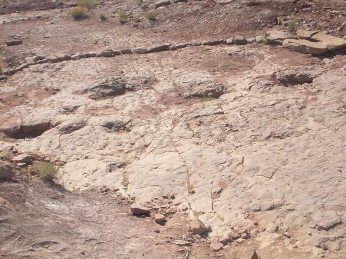Copper Ridge Dinosaur Tracks