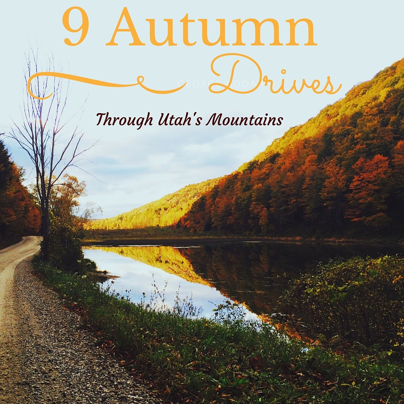 9 best utah fall mountain drives suitcases and sippy cups