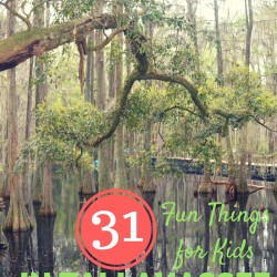 31 Things to do with Kids This Summer in Tallahassee