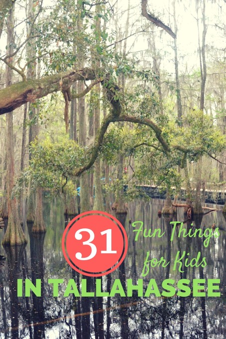 31 Things to Do in Tallahassee